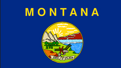 PE, FE Review Courses in Montana